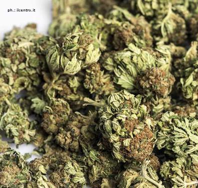 Cessione di marijuana a minorenne: denunciato dalla Polizia Locale