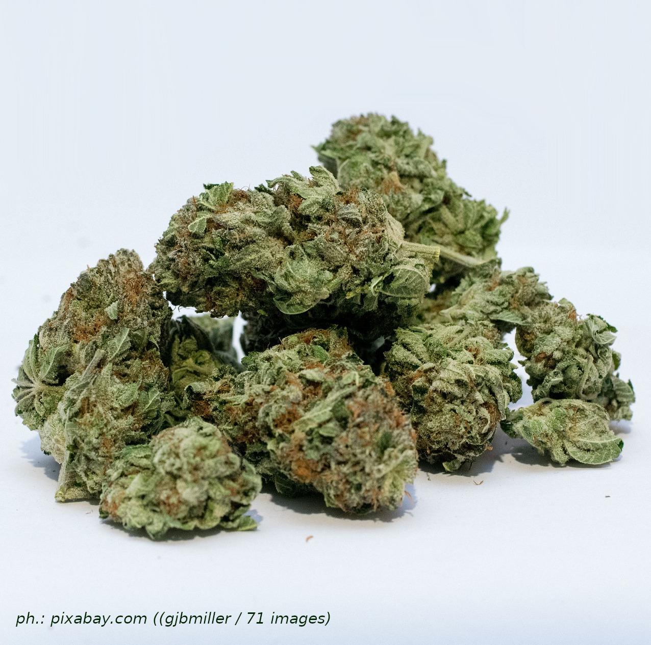Controllo del territorio: minorenni in possesso di oltre 6 grammi di marijuana